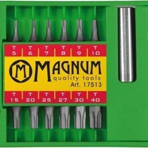 Magnum Torx Kärkisarja 13-Osainen