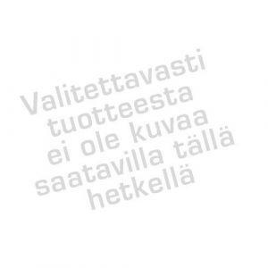 Peloitinlintu / Houkutinlintu Varis 38x22x13 Cm